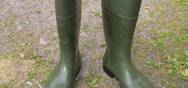 Welly Boots Image