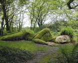 The Lost Gardens of Heligan Image
