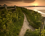 South West Coast Path near Harbour Cove, Padstow. Photographer: Lindsay Philp